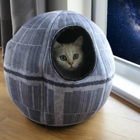 デス・スターのネコのベット01