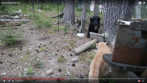 クマを追い払う02