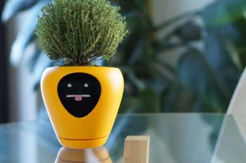 植物の気持ち02
