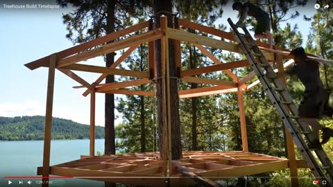 立ち木のログハウス03
