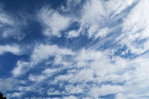よい秋の日の空7