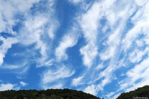 よい秋の日の空2