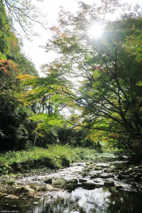 よい秋の日の空1