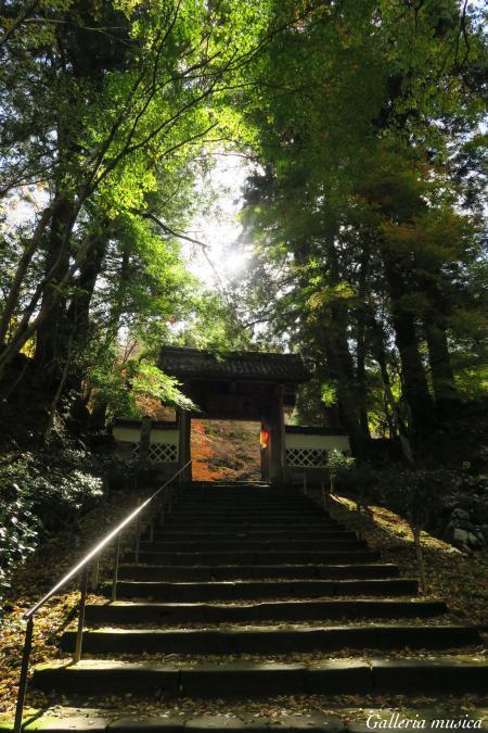 津和野 永明寺。0