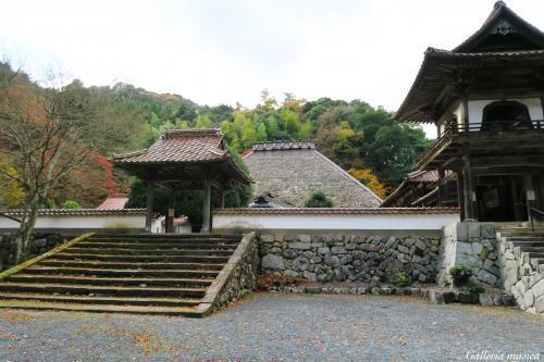 津和野 永明寺。3