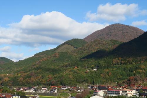 津和野の風景。3