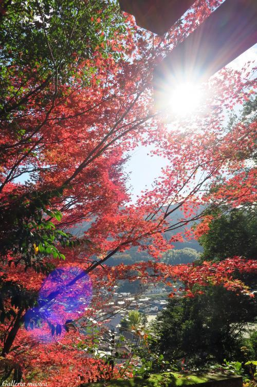 津和野の風景。1