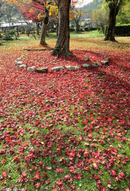 鷲原八幡宮の紅葉。4