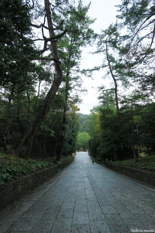 出雲大社早朝散歩8