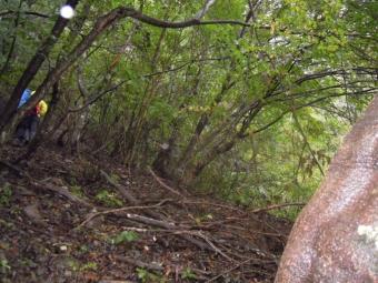 暫く林道歩き181014