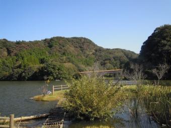 亀山湖からいくつかの橋の一つ181021