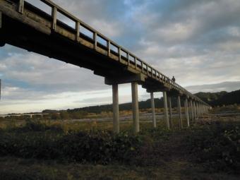 蓬莱橋下から181103