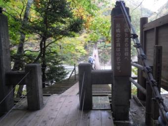 夢の吊り橋時間が気になってサッサと渡る181104