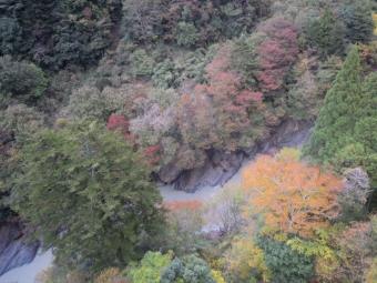 橋の上から181104