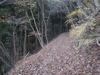 落ち葉でふかふかな登山道181117