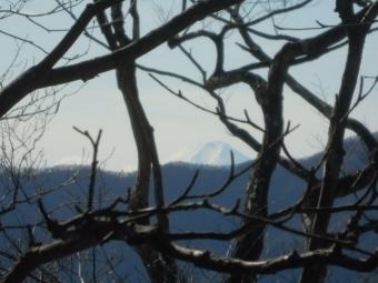 大持山への途中で富士山が見えて181117