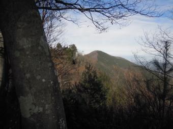 武甲山の登山道色の分かれている所18日1117