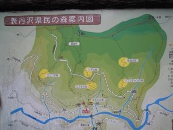 登り始めた所に帰って来た181202