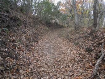 落ち葉の道181226