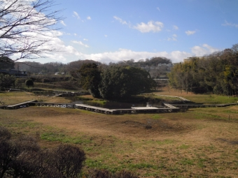 厳島湿生公園181230