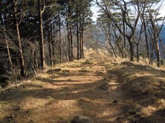 日向薬師方面への登山道190103