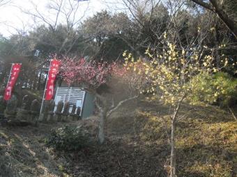聖峰不動尊190117
