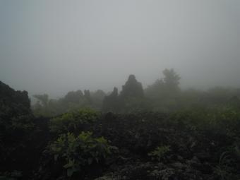色々な形の火山岩1-190707