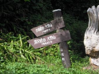 大野山への道の幾つか190929