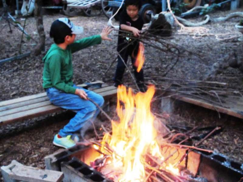 キウィナイトフェレストキャンプ0829_06