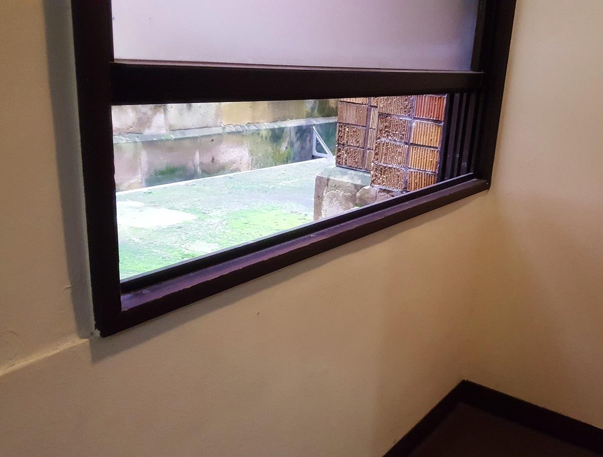 東大_小窓からコケと煉瓦