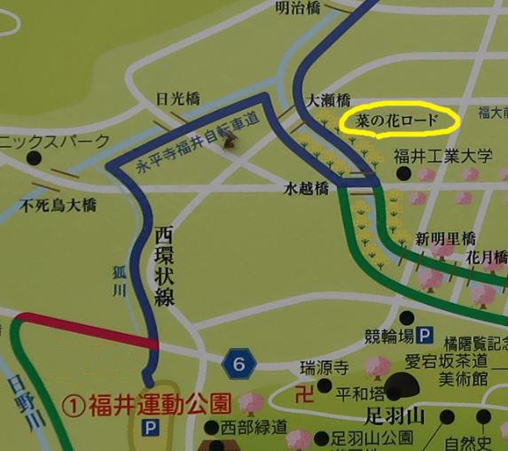 map1bu.jpg