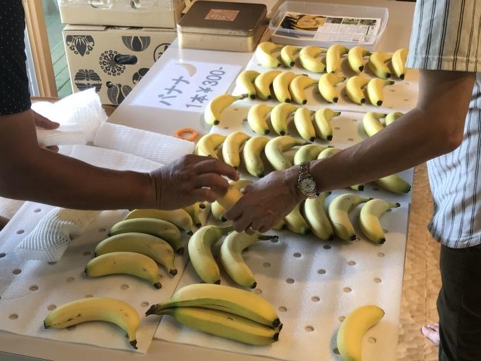 banana19090802.jpg