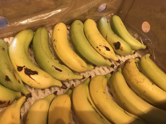banana19100502.jpg