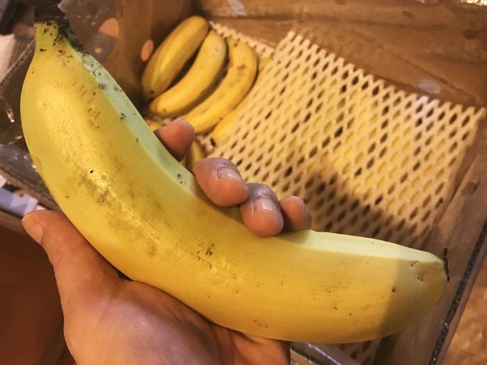 banana19100503.jpg