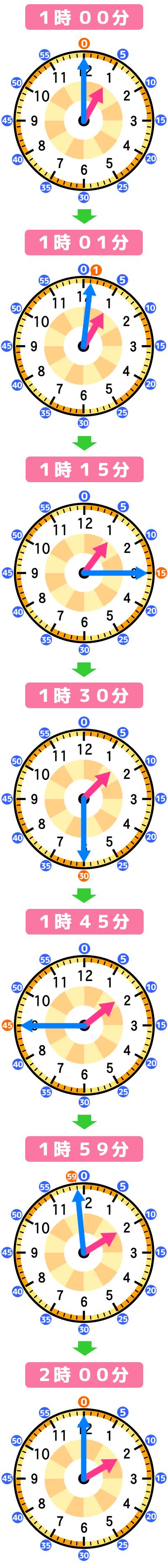 「1時ちょうど」から「2時ちょうど」までの長針と短針の動き