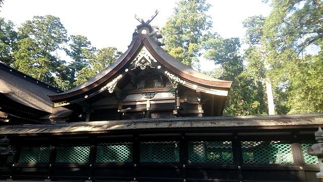 香取神宮 本殿 (3)
