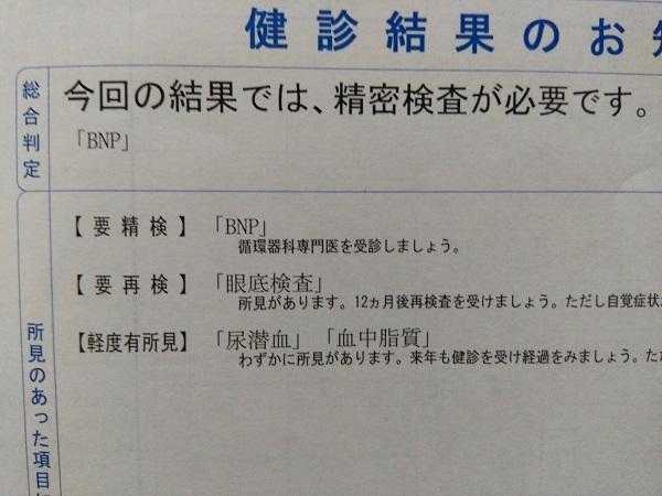 20181022用・要精密検査