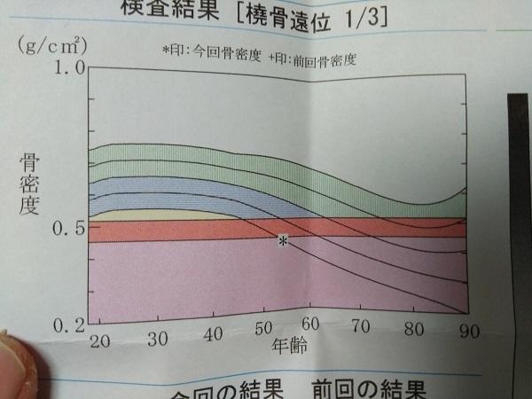 20190402用・グラフ