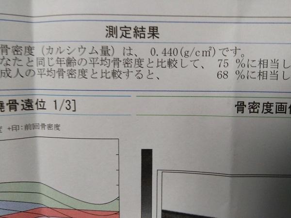20190402用・診断結果