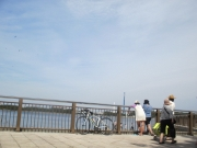 金沢八景 海の公園 2019/5/3