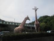 金沢自然公園前 2019/5/3 15:11