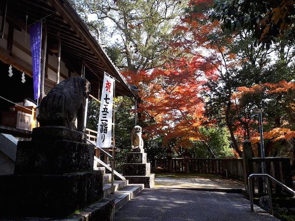 笛吹神社の紅葉1