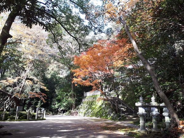 笛吹神社の紅葉2