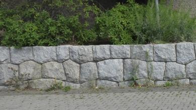 sara03-002b.jpg