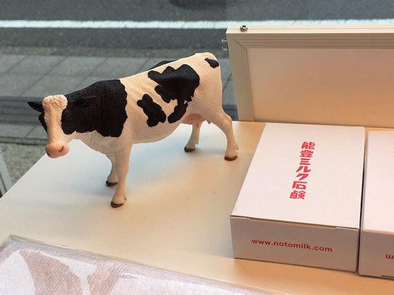 能登ミルクの牛