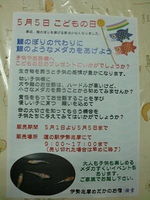 伊勢志摩メダカチラシjpg
