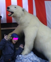 白熊に襲われる私