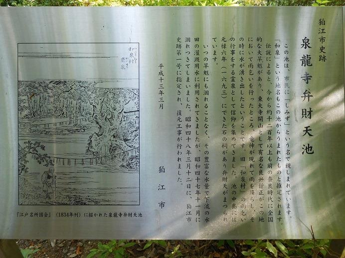 126-3-5.jpg