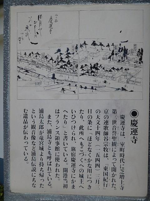 128-1-12.jpg