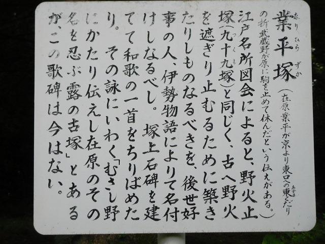 161-3-24.jpg